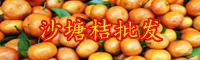沙糖桔怎样种植生产量高?栽种两年結果?亩产量是多少?