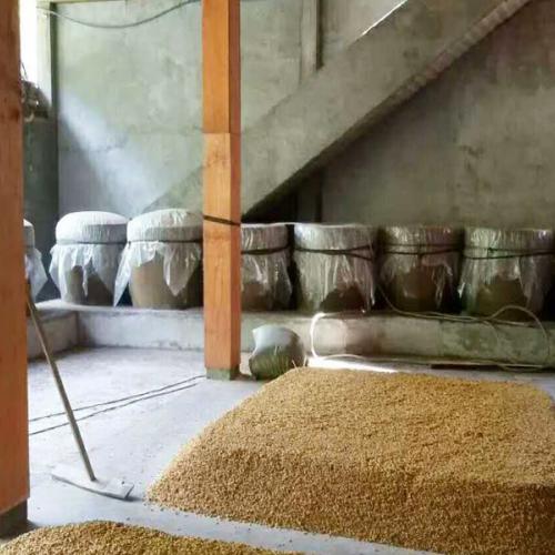 庙坝蛮滩酒厂_虎头蜂酒的功效与作用?附虎头蜂酒的制作方法!