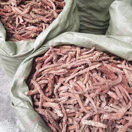 四川红景天药材有什么功效作用?种植市场前景和价格参考