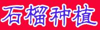 石榴树是啥时节成熟上市?附石榴树的种植方法和时间