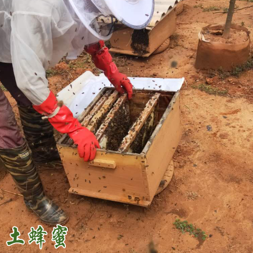 哪里有卖云南高原蜜&云南高原蜜一斤多少钱