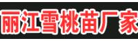 2020年曲靖丽江雪桃种苗多少钱一棵?