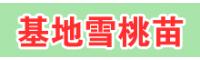 普洱丽江雪桃种苗多少钱一棵?