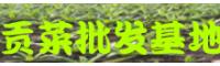 楚雄人工种植贡菜_贡菜种植多久可以采收