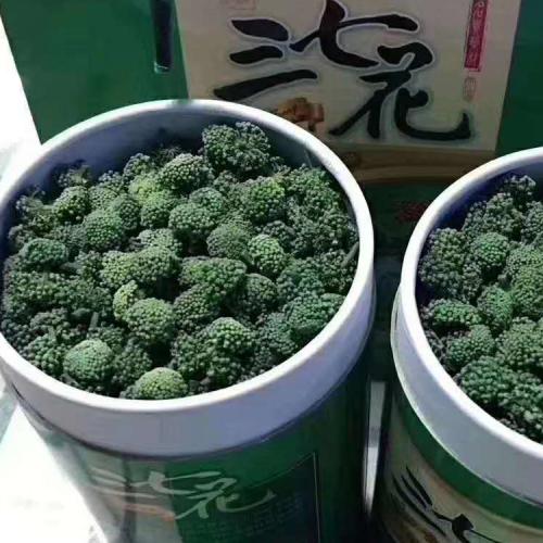 三七花|青海西宁三七花批发供应商