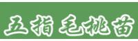 五指毛桃苗价格  广西钦州市钦南区0.6元/株