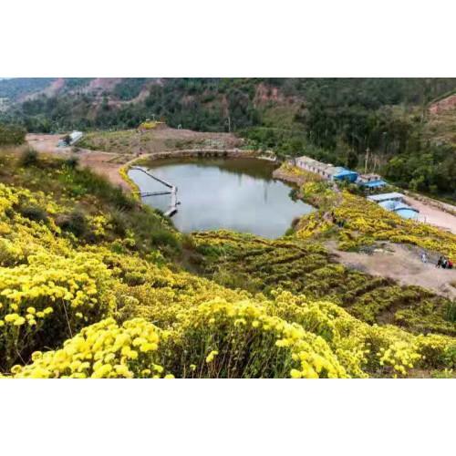 楚雄附近的有哪些药王谷(图片)