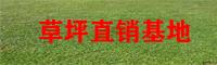 百色草坪专业种植户_草坪种子栽培技术_草坪批发商价格