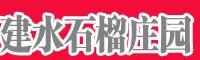 建水石榴庄园-滇泽王黑美人石榴