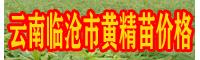 黄精种苗 云南临沧市云县黄精种价格