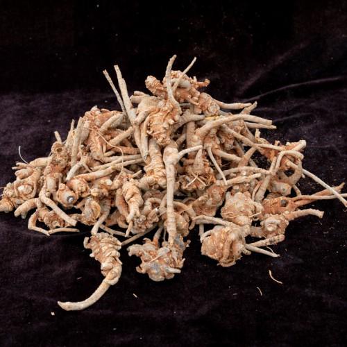 三七什么时候种植最好?施肥技术要点有哪些?