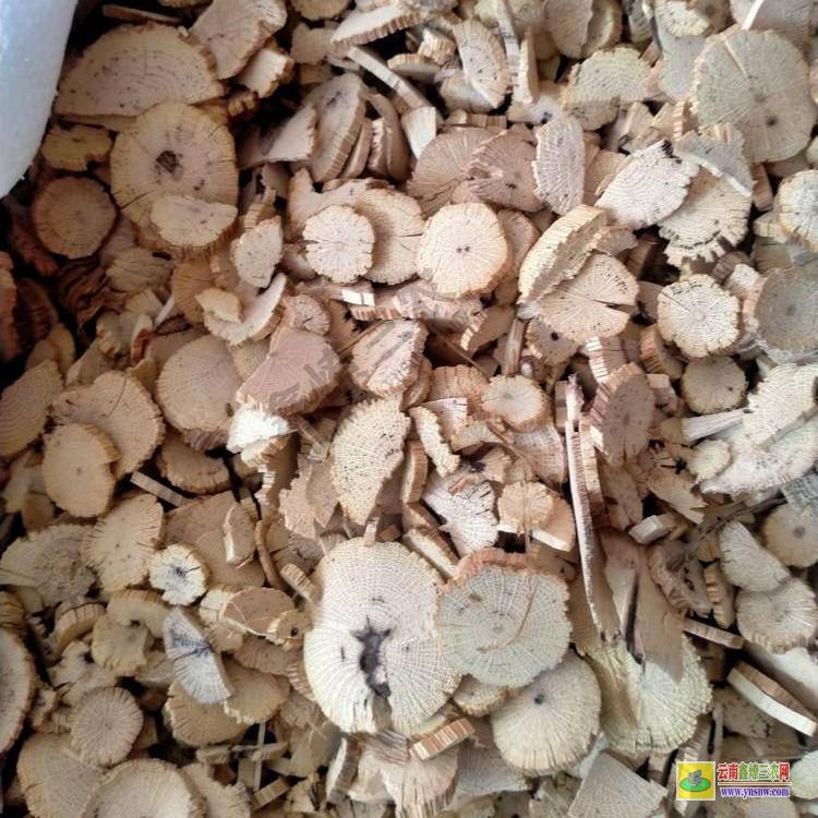 能种植通草的地方 大概多少钱一斤 正宗川木通价格