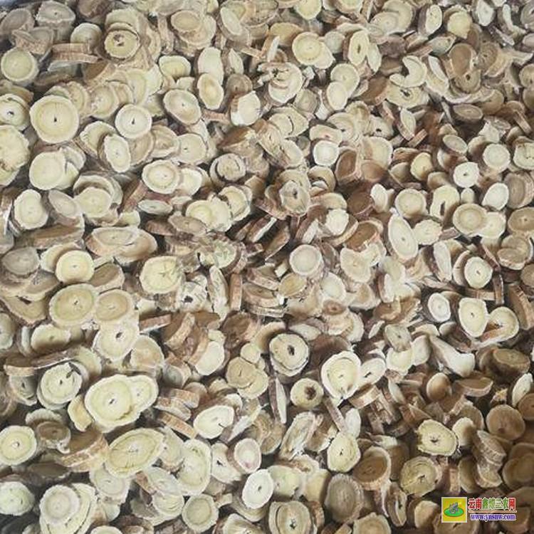 云南木通的价格 大概多少钱一斤 云南通草价格多少钱一斤